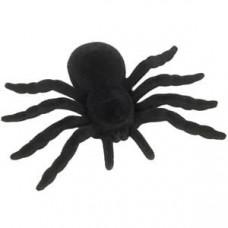 Large Black Furry Spider