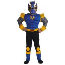 Power Rangers - Blue Beetle Ranger Costume