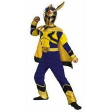 Power Rangers - Special Ranger Costume