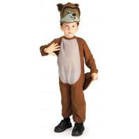 RJ Raccoon Costume