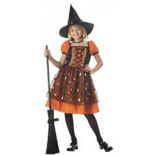 Pretty Pumpkin Witch Costume