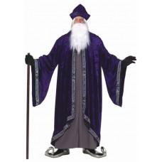 Grand Wizard Plus Size Costume