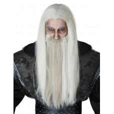Dark Wizard Wig & Beard