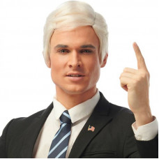 Candidate Wig