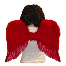 """22"""" Red Feather Wings"""
