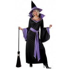 Incantasia Witch Costume