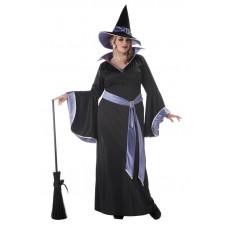 Incantasia Witch Plus Size Costume