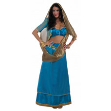 Bollywood Beauty Deluxe Costume