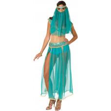 Harem Princess Costume